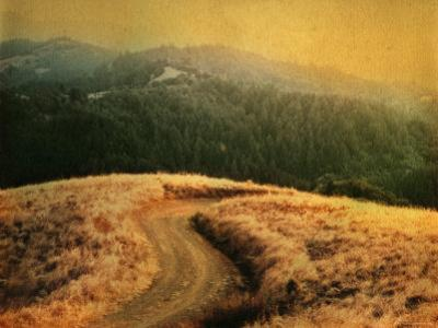 Windy Trail on Hill by Robert Cattan
