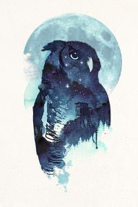 Midnight Owl by Robert Farkas