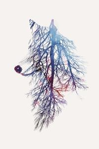 My Roots by Robert Farkas