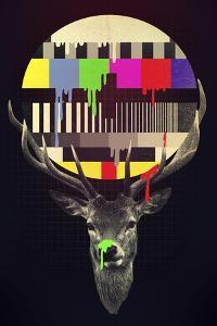 No Signal by Robert Farkas
