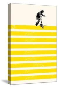 Slide in Stripes by Robert Farkas