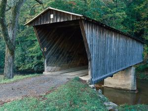 Bob White's Bridge, Patrick County, VA by Robert Finken