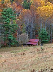 Cabin in Late Autumn in West Virginia by Robert Finken