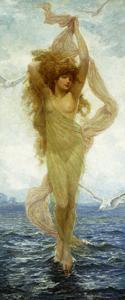 The Birth of Venus by Robert Fowler