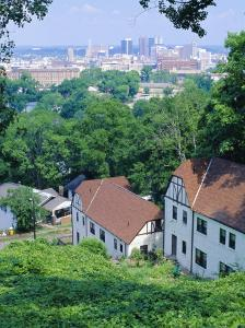 Houses Amid Trees and City Skyline in the Background, of Birmingham, Alabama, USA by Robert Francis
