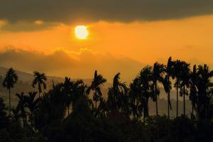 Palm trees and foothills of the Elephant Mountains seen from the Praek Tuek Chhu River, Cambodia by Robert Francis