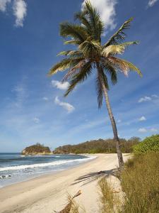 Playa Pelada, Nosara, Nicoya Peninsula, Guanacaste Province, Costa Rica, Central America by Robert Francis