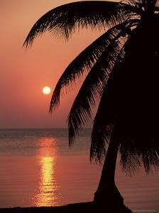 Sunset Seen from the Resort of West End on Roatan, Largest of the Bay Islands, Honduras, Caribbean by Robert Francis