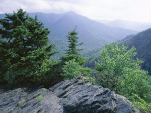 View from the Alum Cave Bluffs Trail in Great Smoky Mountains National Park, Tennessee, USA by Robert Francis