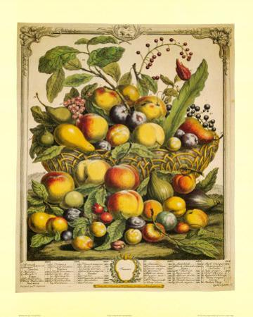 Fruits of the Season Summer