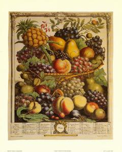 Fruits of the Season, Winter by Robert Furber