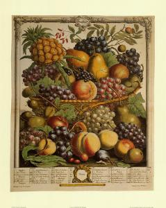 Fruits of the Season Winter by Robert Furber