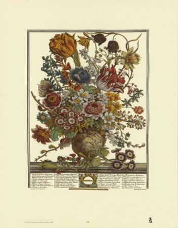 Twelve Months of Flowers, 1730, March