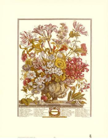 Twelve Months of Flowers, 1730, October