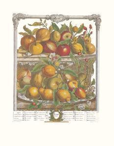 Twelve Months of Fruits, 1732, April by Robert Furber