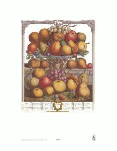 Twelve Months of Fruits, 1732, December by Robert Furber