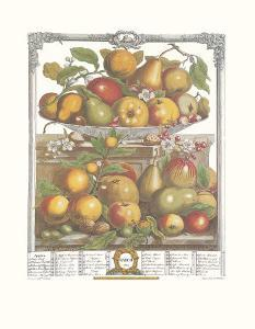 Twelve Months of Fruits, 1732, March by Robert Furber