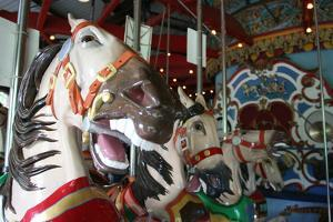 Central Park Carousel by Robert Goldwitz
