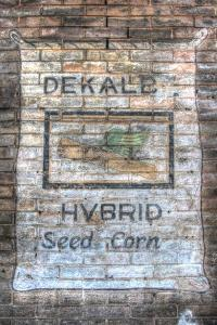 Feed Sign 2 by Robert Goldwitz