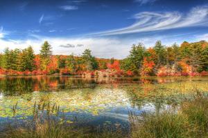 Harriman Pond by Robert Goldwitz