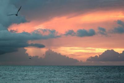 Key West Sunset IV by Robert Goldwitz