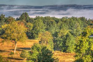 Misty Shawangunk View by Robert Goldwitz