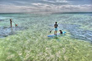 Paddle Board Pups by Robert Goldwitz