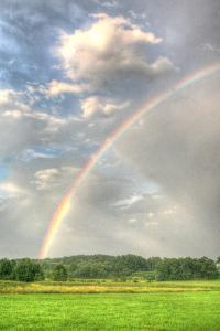 Rainbow Vertical by Robert Goldwitz