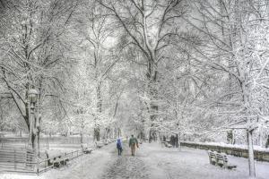 Riverside Park snow walk by Robert Goldwitz