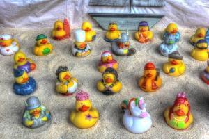 Rubber Duckies by Robert Goldwitz