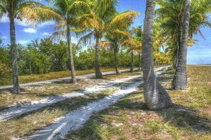 Sandy Trail by Robert Goldwitz