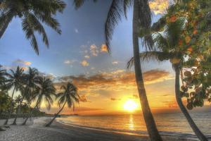 Smathers Beach Sunrise 2 by Robert Goldwitz
