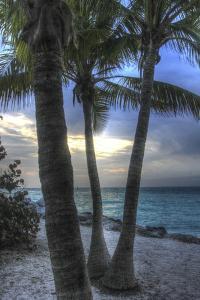 Smathers Beach Sunrise Vertical 2 by Robert Goldwitz