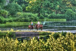 Tillson Pond Riders by Robert Goldwitz
