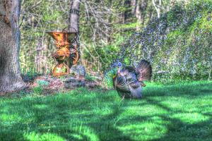 Turkey and Corn Husker by Robert Goldwitz