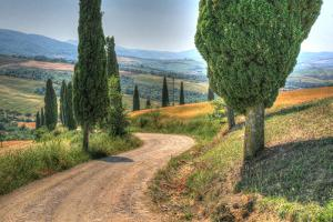 Tuscan Footpath by Robert Goldwitz