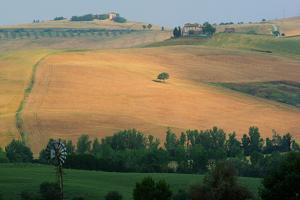 Tuscan Hill II by Robert Goldwitz