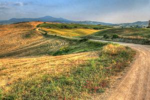Tuscan Ridge Top Trail by Robert Goldwitz