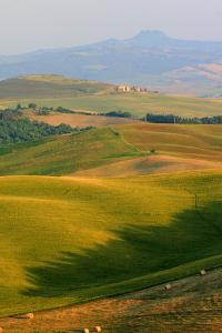 Tuscan Vertical Distant Hill Castle by Robert Goldwitz