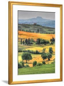 Tuscan Vertical Switchbacks by Robert Goldwitz