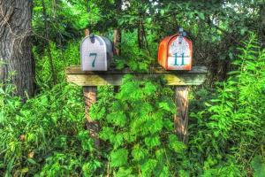 Two Mailboxes by Robert Goldwitz