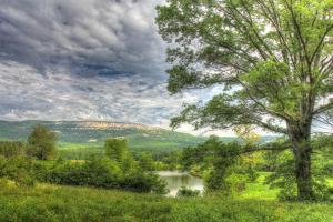 View from the Oxbow by Robert Goldwitz
