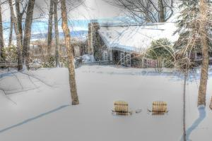 Winter Adirondak Chairs by Robert Goldwitz