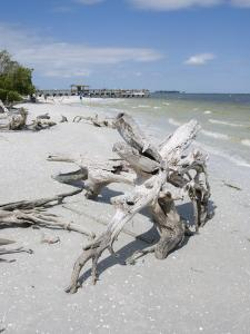 Driftwood on Beach with Fishing Pier in Background, Sanibel Island, Gulf Coast, Florida by Robert Harding