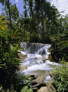 Dunns River Falls, Jamaica, Caribbean, West Indies, Central America by Robert Harding