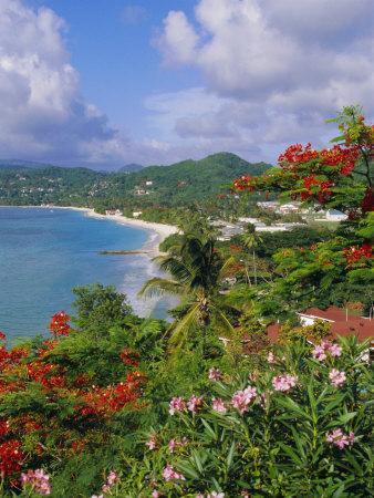 Grand Anse Beach, Grenada, Caribbean, West Indies
