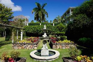 Nevis Botanical Garden, Nevis, St. Kitts and Nevis by Robert Harding