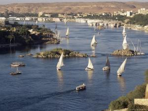 View of the River Nile, Aswan, Egypt, North Africa, Africa by Robert Harding