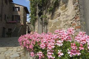 Volpaia, a Hill Village Near Radda, Chianti, Tuscany, Italy, Europe by Robert Harding