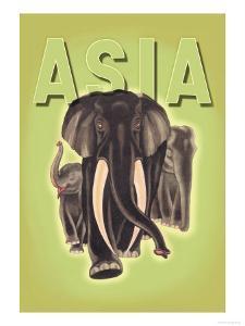 Indian Elephants by Robert Harrer